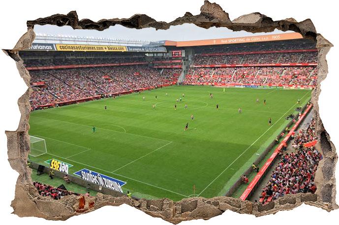 Zebra vinilos 3d estadio el molin n vinilo 3d estadio el molin n 28 00 vinilos - Estadio del sporting de gijon ...